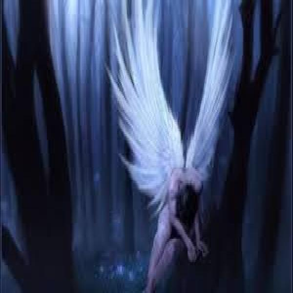 Curso Meditando com o Santo Anjo guardiao