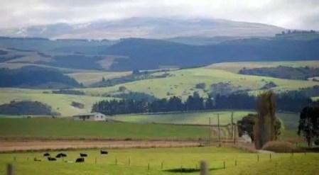 Conheça as maiores fazendas do mundo, gigantes! - Compre Rural