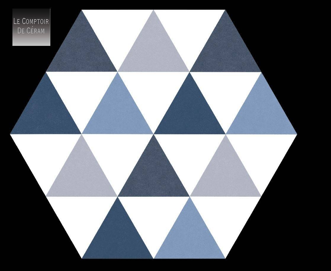 carrelage hexagonal mur et sol