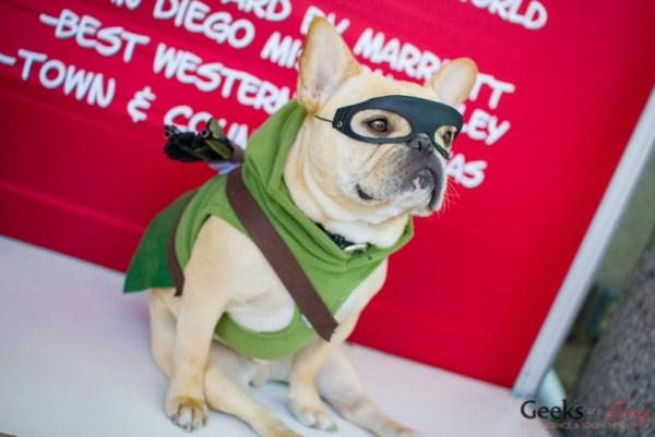 green-arrow-dog