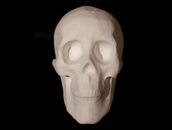 Skull Honeycomb Sculpture
