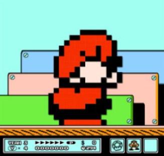 Mario Crouching