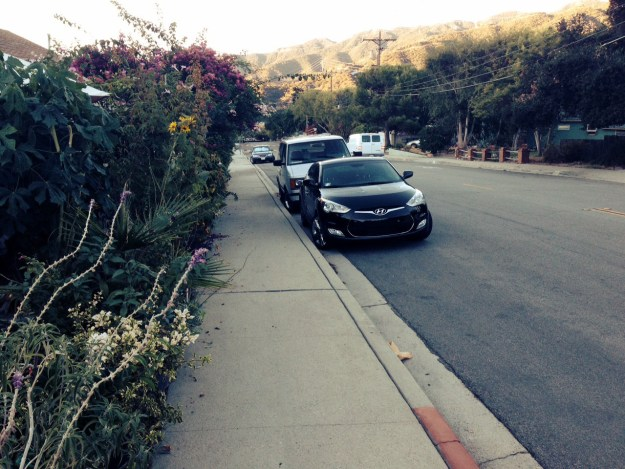 Street view at 6:30 a.m. Cars are parked along the road and a bank of flowers grow on one side of the sidewalk.