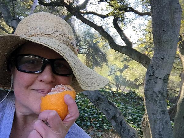 Laurie sniffs a half peeled mandarin orange under an oak tree in the park