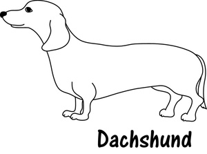 dachshund clipart image dachshund coloring page