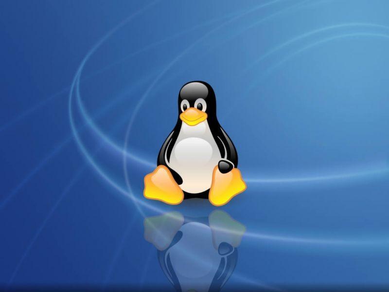 Tux, das Linux Maskotchen