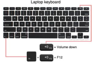 What are the F1 through F12 keys?
