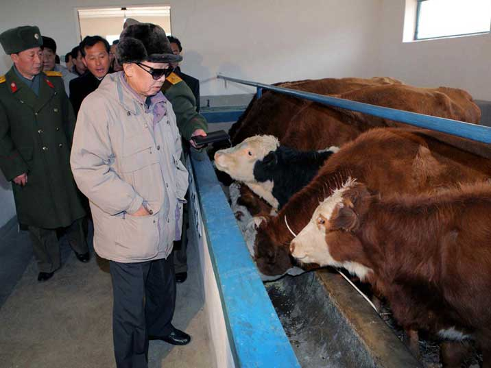 Kim Jong Il backed by officers visits the July 18 Cattle Farm