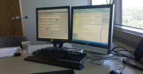 monitor dual