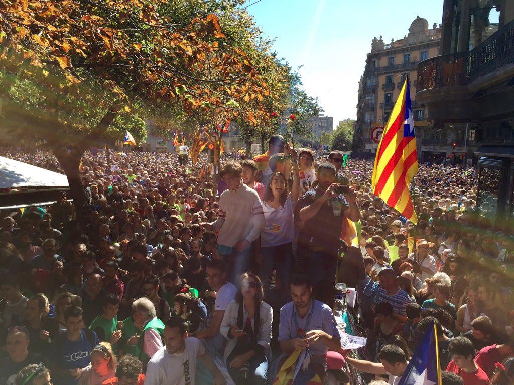 Caos Catalogna: