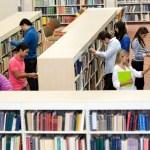 Las bibliotecas tienen que trabajar codo con codo entre ellas y con su comunidad
