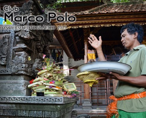 Premio mejor grupo: Borneo, Sulawesi y Bali por Miguel Amorós