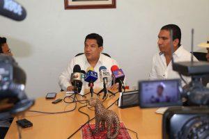 Sobre-las-afectaciones-a-la-tienda-Coppel-en-Palenque-1