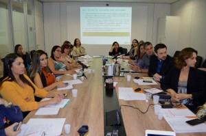 Técnicos dos estados participam da Câmara Técnica de Assistência Farmacêutica