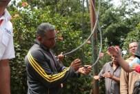 Técnicos de Conatel inspeccionando la vandalización de las redes en Gavilán, municipio El Hatillo. (Foto: Jesús Fernández)