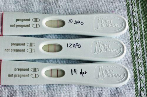 kits de preditores de ovulação para monitorar o LH