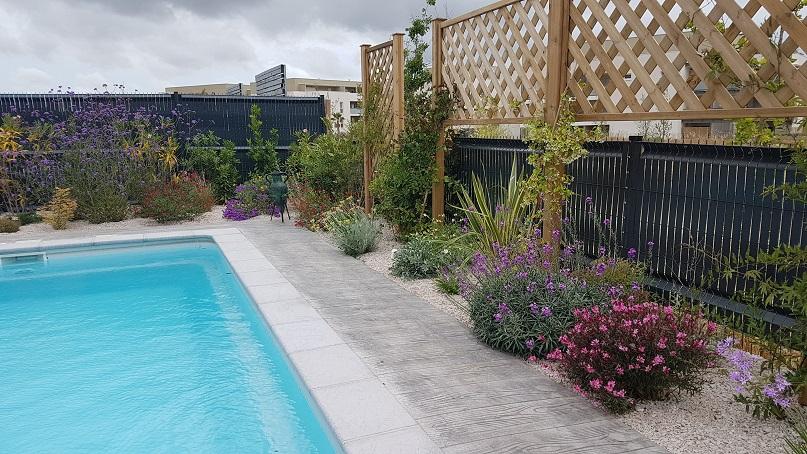 amenagement piscine et jardin concept