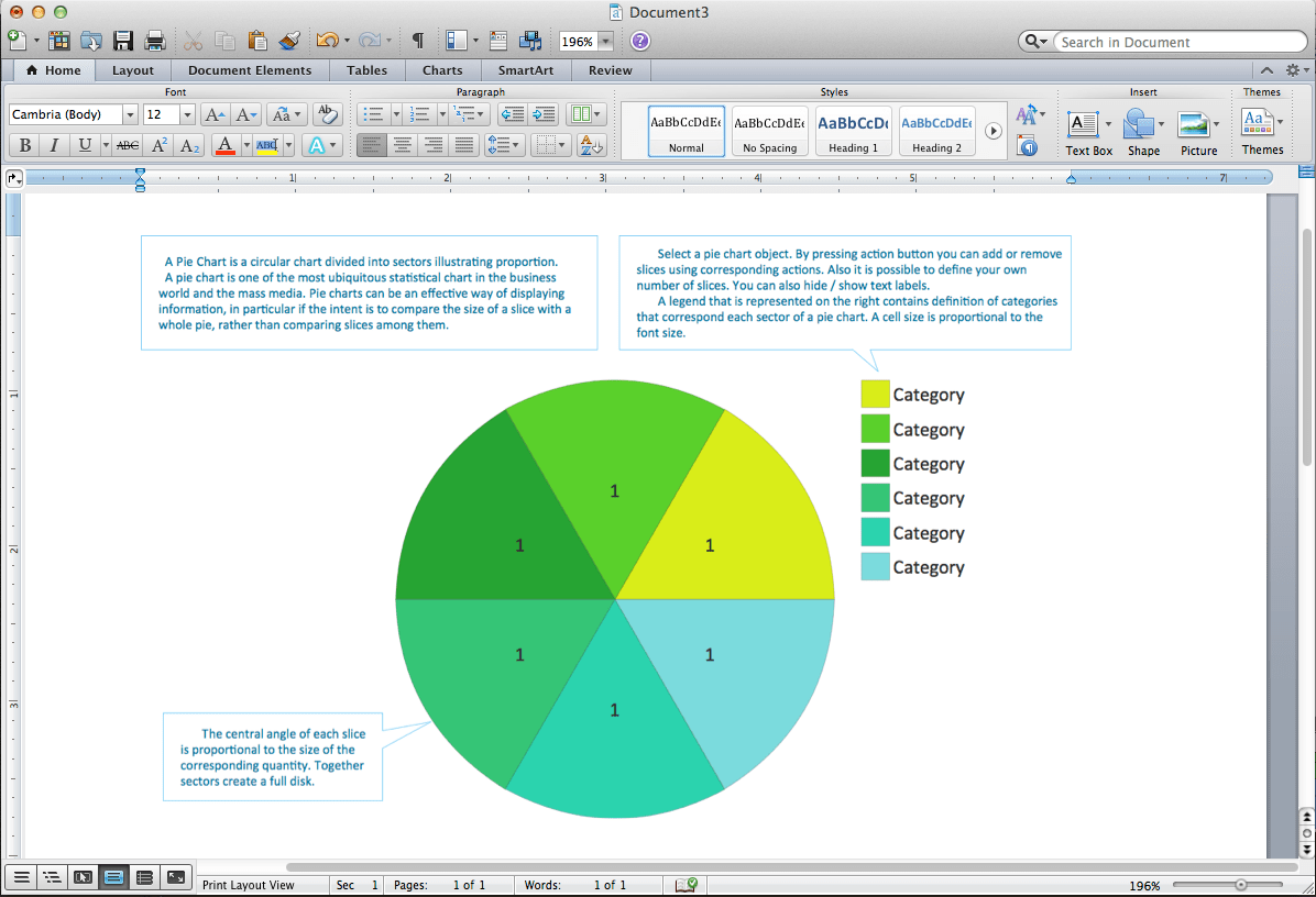 Pie Chart Word Template Pie Chart Examples