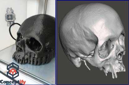 Scan et impression 3D d'un crâne à taille réelle