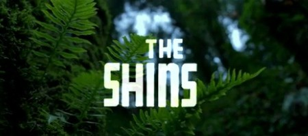 the shins video