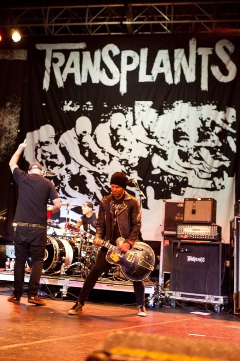 Transplants_MFP_11