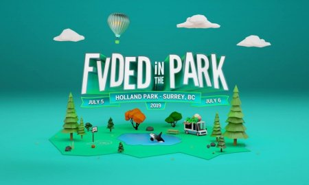 fvded in the park 2019 music festival
