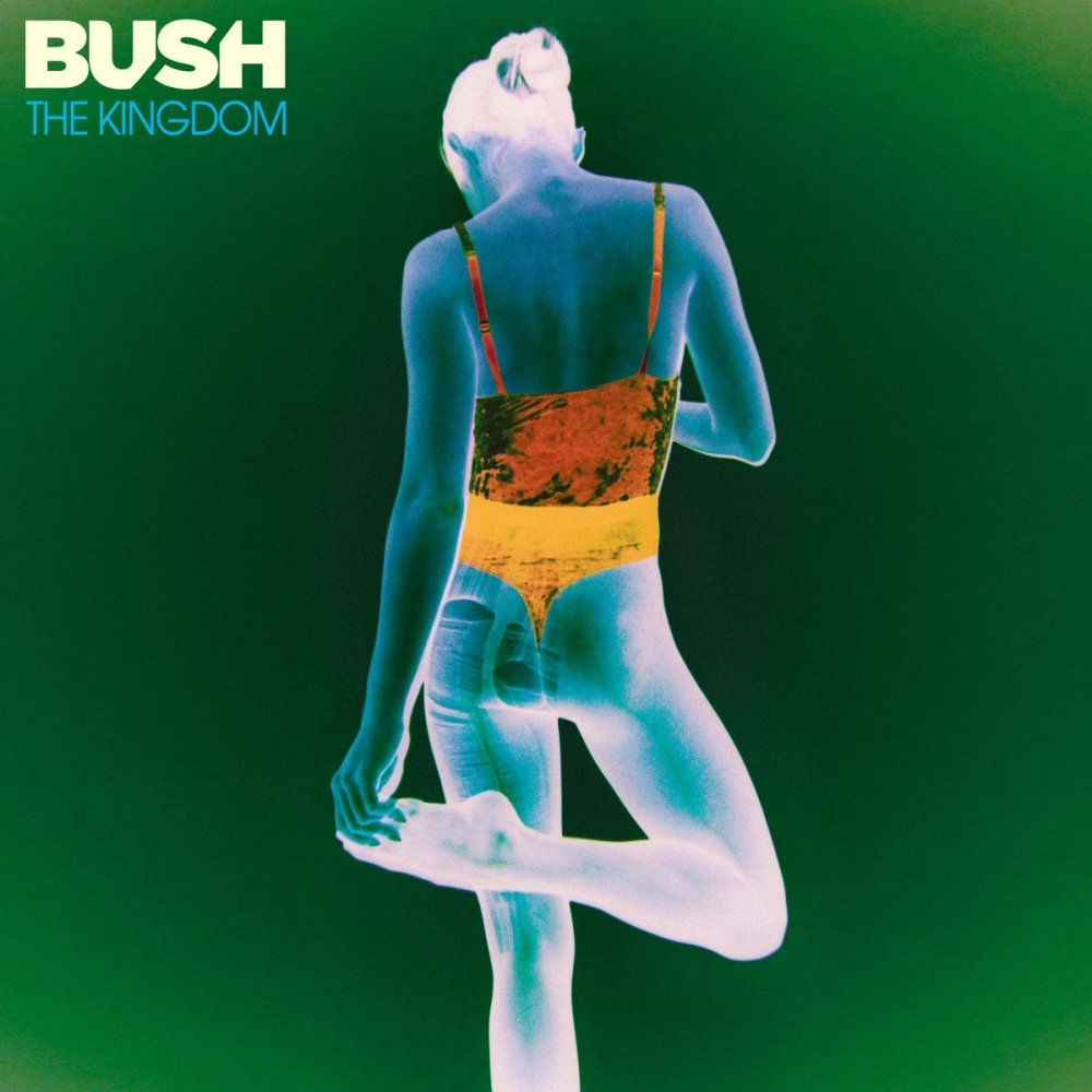 bush album the kingdom cover art 2020