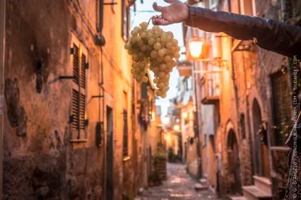 Sagra dell'uva a Marino laziale, Roma