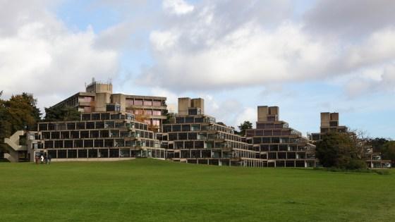 Ziggurats news