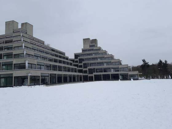 Love and loss at UEA