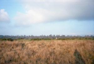 East Anglian Landscape with Shadow © The W. G. Sebald Estate
