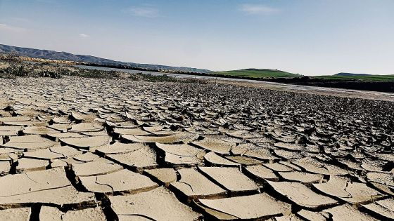 Droughts continue to devastate regions of South Africa