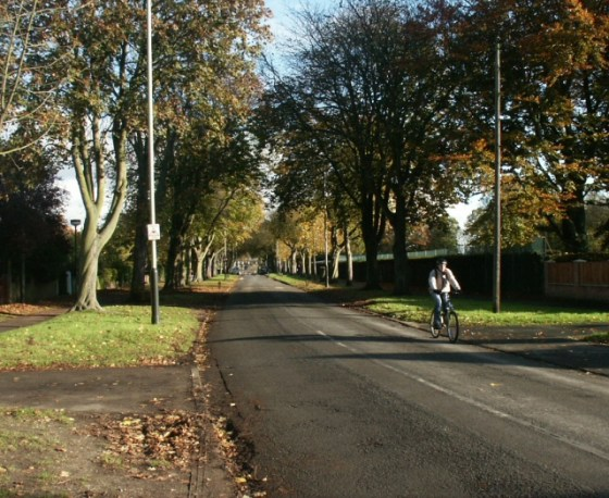 More road space needed to socially distance, say Norwich Greens