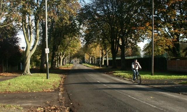 cycle lane Norwich Green Party