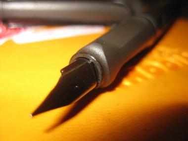 pen pic