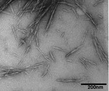 Natural Nanocrystals Shown to Strengthen Concrete