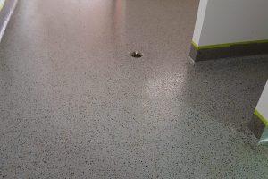 Carnegie Primary School -Vinyl Flake Flooring 11