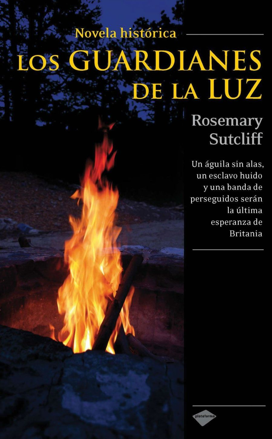 Los guardianes de la luz Book Cover