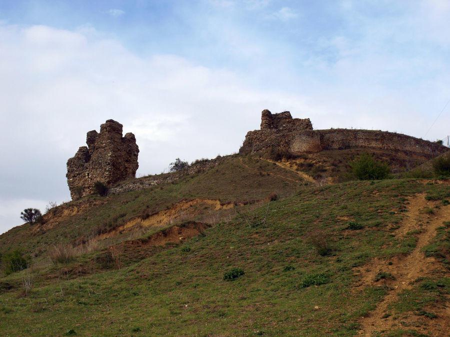 Bernardo del Carpio y su origen en el condado de Saldaña