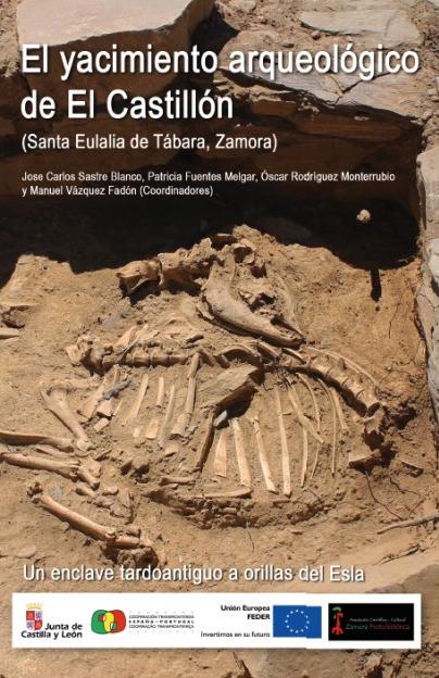 El yacimiento arqueológico de El Castillón (Santa Eulalia de Tábara, Zamora) Un enclave tardoantiguo a orillas del Esla Book Cover