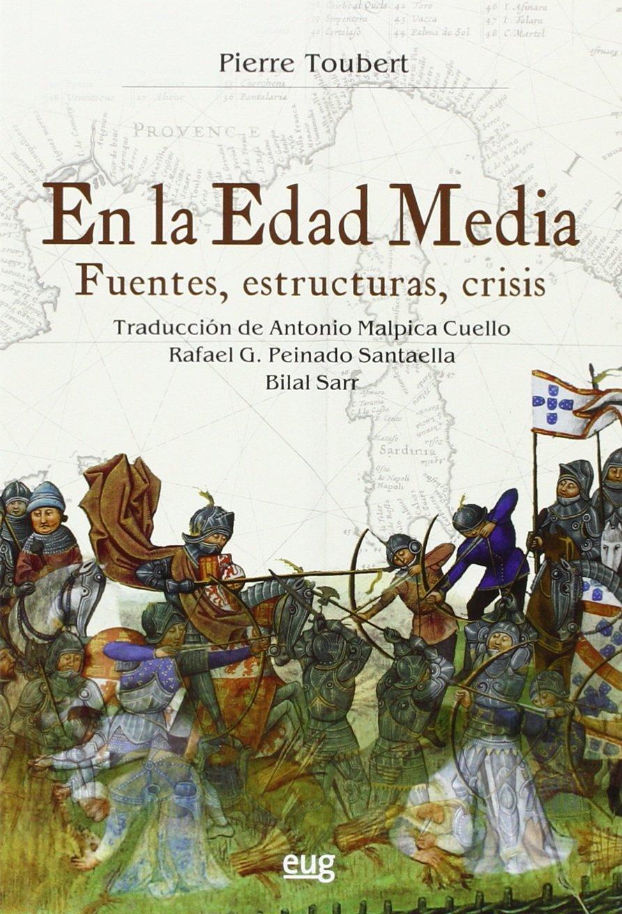 En la Edad Media. Fuentes, estructuras, crisis Book Cover