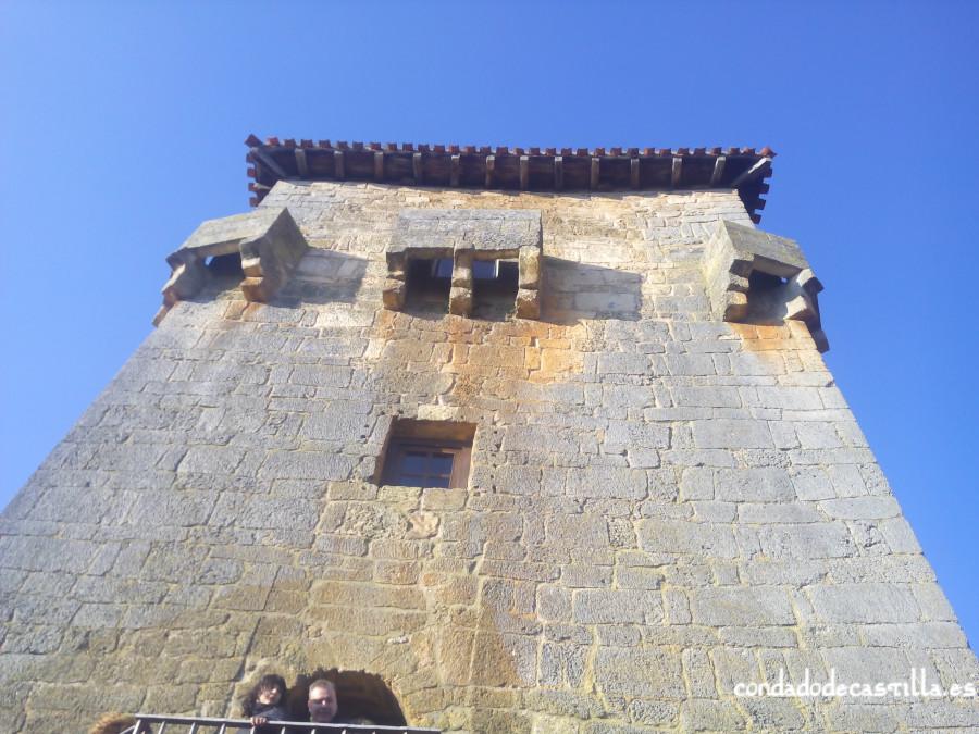 Matacanes del torreón de Covarrubias