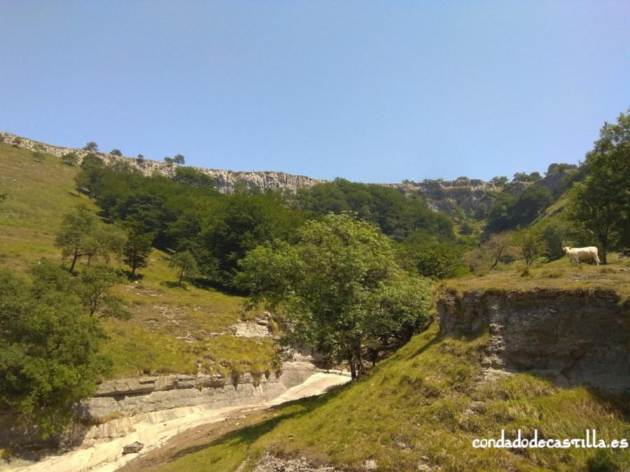 Cauce seco del arroyo de San Miguel antes del salto