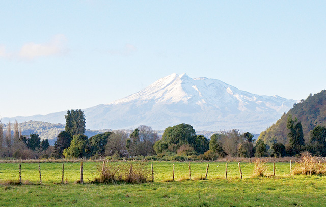 El Volcan Calbuco desde El Terreno. Todas las parcelas tienen vista hacia el volcán Calbuco, en primer plano, así como también hacia el volcán Osorno. (Fotografía 2016, Erika Klein)