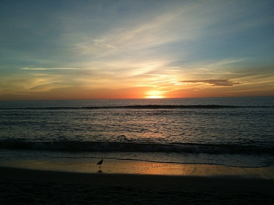 Vanderbilt Beach, Naples FL USA 34108