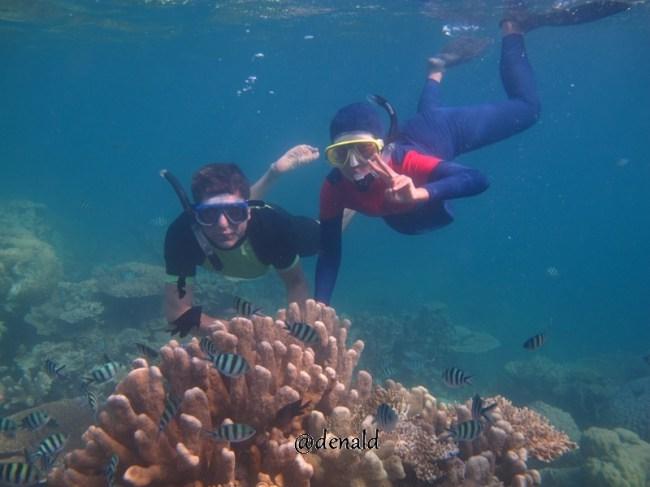 Snorkeling di Pulau Cemara Besar