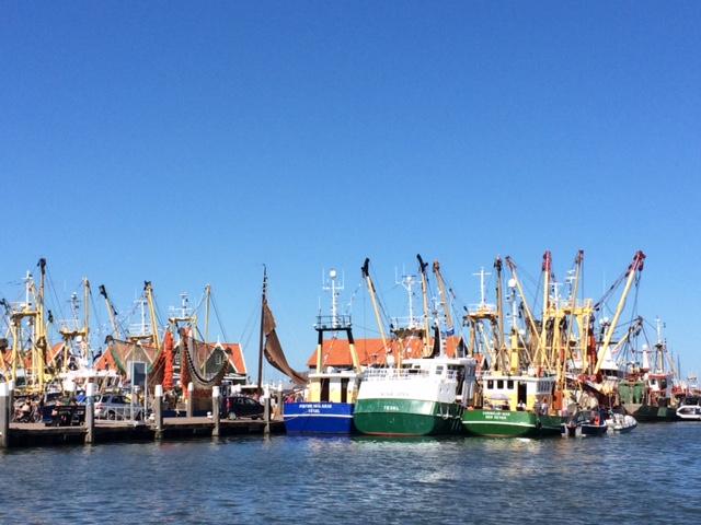 Pelabuhan Oudeschild