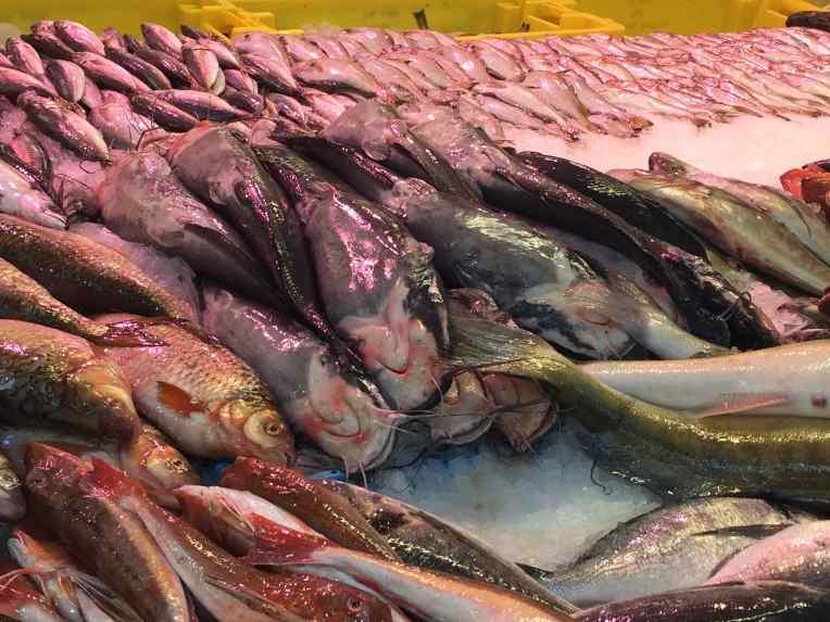 De Haagse Markt - Den Haag - Belanda Stan ikan. Ikan lele pun ada