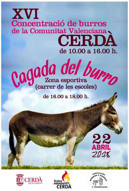 """Els festers de Sant Antoni de Cerdà 2019 organitzen """"La cagà del burro""""."""