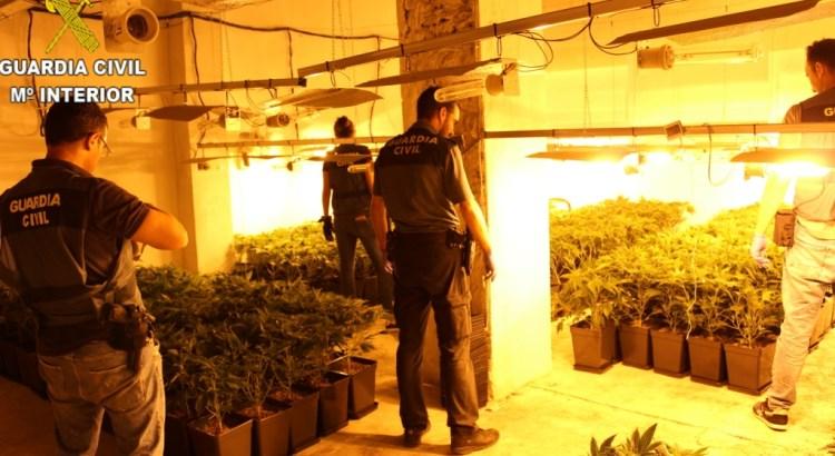 La Guardia Civil de Canals detiene a un varón por los delitos de cultivo y elaboración de drogas